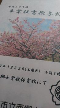 DSC_1232.jpg